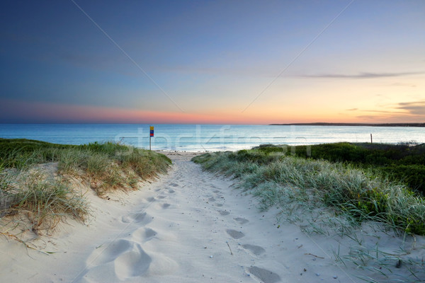 Sandy beach trail at dusk sundown Australia Stock photo © lovleah