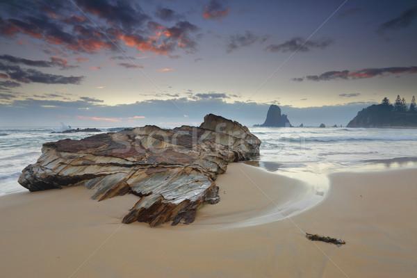 Ventoso manhã costa primeiro plano um muitos Foto stock © lovleah