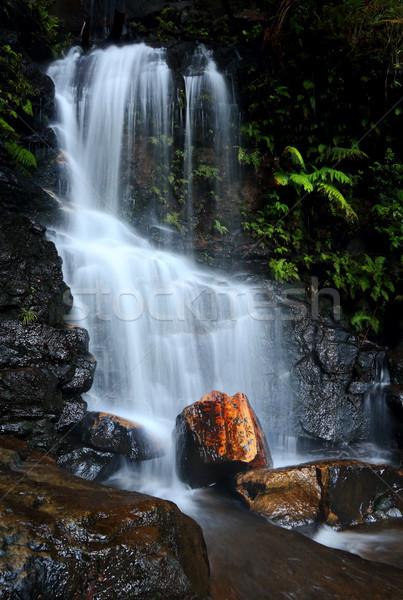 Blauw bergen weinig waterval spectaculaire rock Stockfoto © lovleah