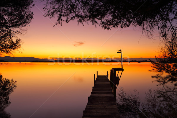 Old timber jetty at dawn framed by trees Stock photo © lovleah