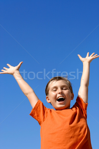 Joyful boy success, rejoice, achievement Stock photo © lovleah