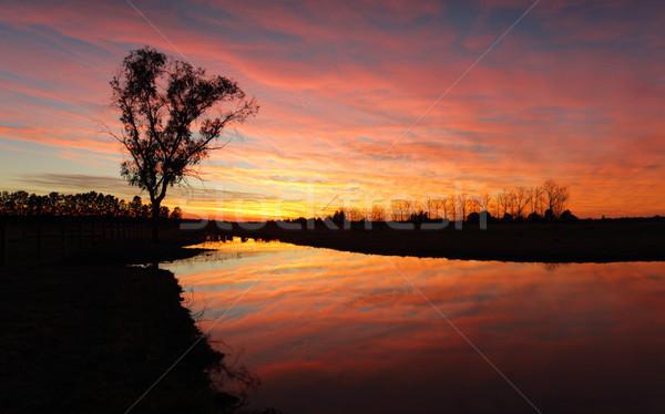 Canlı kırsal gündoğumu ateşli muhteşem renkli Stok fotoğraf © lovleah