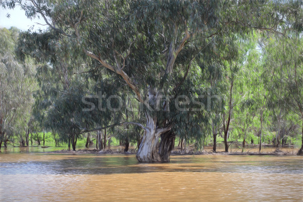 Gum Tree in Floodwaters Stock photo © lovleah