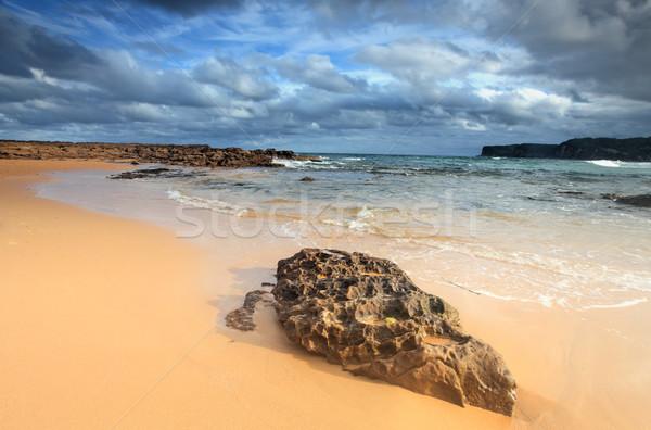 North Avoca Beach Stock photo © lovleah