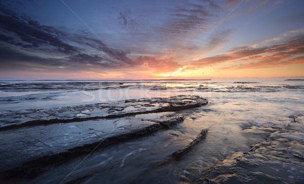 плантация точки Восход красивой высокий облаке Сток-фото © lovleah