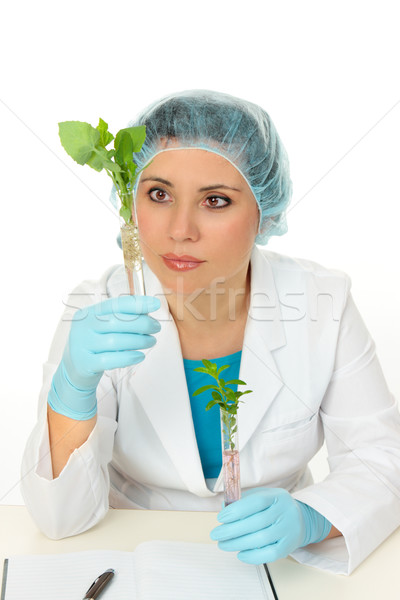 Botanical scientist Stock photo © lovleah