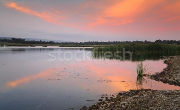 Scena tranquilla lago tramonto colori uno molti Foto d'archivio © lovleah