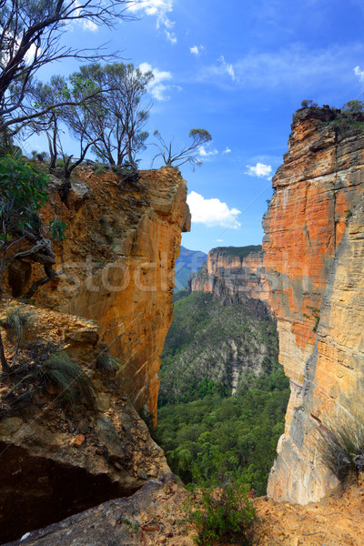 Burramoko Head and Hanging Rock in NSW Blue Mountains Australia Stock photo © lovleah