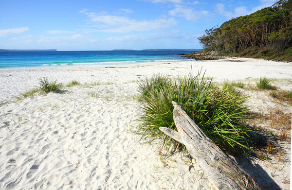 Unspoilt natural beach Greenfields Jervis Bay Stock photo © lovleah