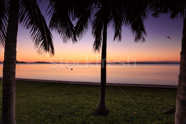 Sunset at Lake Macquarie, NSW Australia Stock photo © lovleah