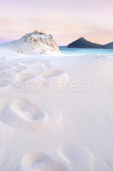 Sunset across the sand dunes Stock photo © lovleah