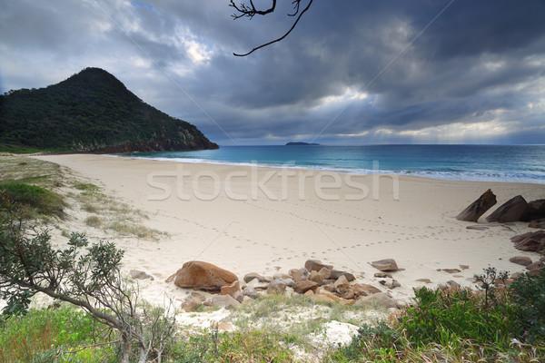 Beautiful Zenith Beach Port Stephens Stock photo © lovleah