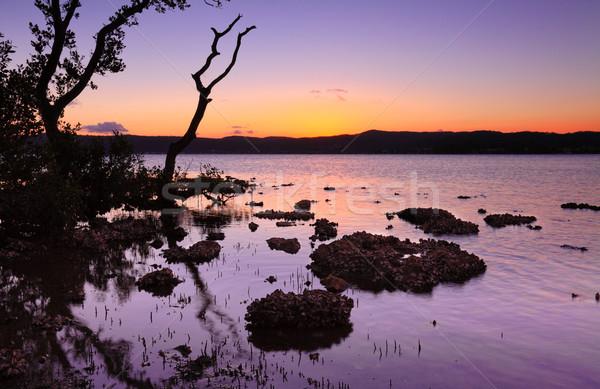 Tidal shallows at sundown landscape Stock photo © lovleah