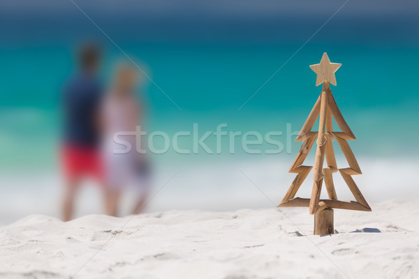 Christmas spent down at the beach Stock photo © lovleah