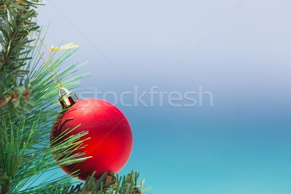 Karácsony csecsebecse fa tengerpart fényes piros Stock fotó © lovleah