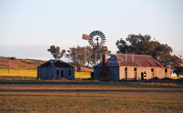 Farm outbuildings in late afternoon light Stock photo © lovleah