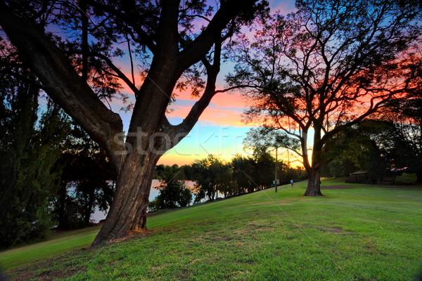 平野 川 オーストラリア 美しい 日没 ストックフォト © lovleah