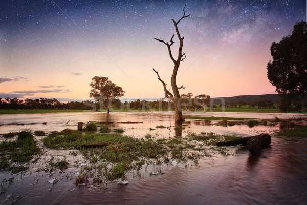Floodwaters dusk to evening Outback Australia Stock photo © lovleah