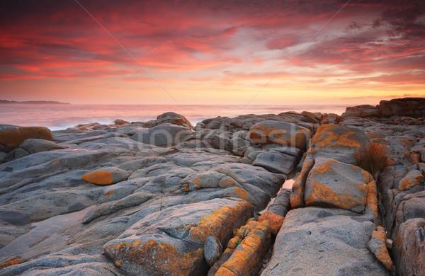 Gündoğumu zengin kırmızı bulutlar boya gökyüzü Stok fotoğraf © lovleah