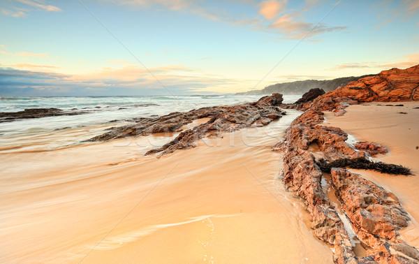 Wcześnie rano ponosi plaży niebieski głowie świetle Zdjęcia stock © lovleah