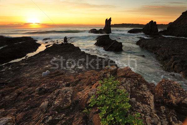 Cathedral Rock at Sunrise NSW Australia Stock photo © lovleah