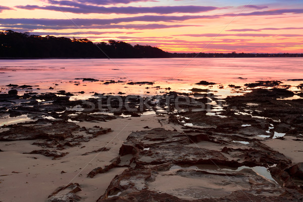 Sunset at Plantation Point NSW Australia Stock photo © lovleah