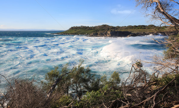 Huge surf and turbulent seas at Jervis Bay Stock photo © lovleah