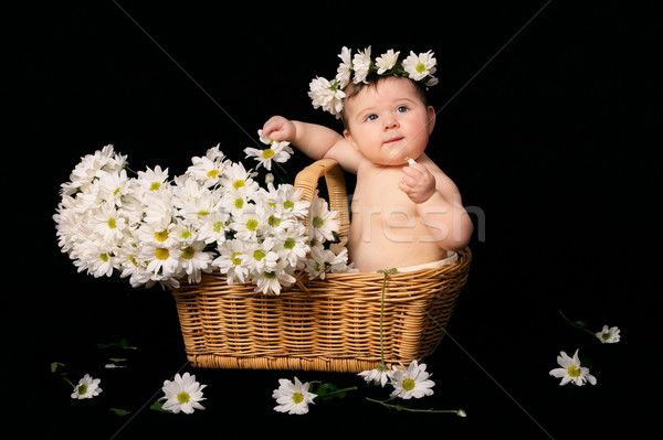 Bebé margaritas me enfermo comer pétalos Foto stock © lovleah