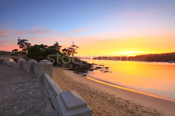 Sunrise Balmoral Beach seaside suburb Sydney Australia Stock photo © lovleah