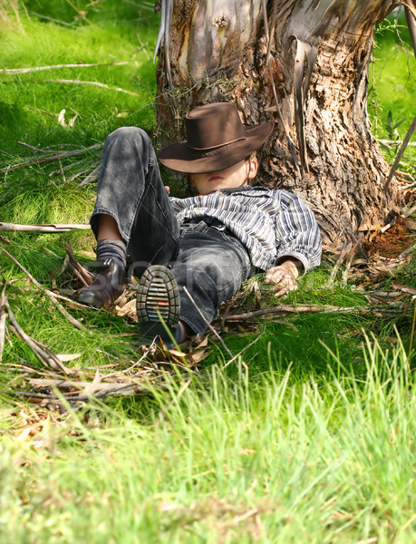 Guma drzewo dziecko miejscu Zdjęcia stock © lovleah