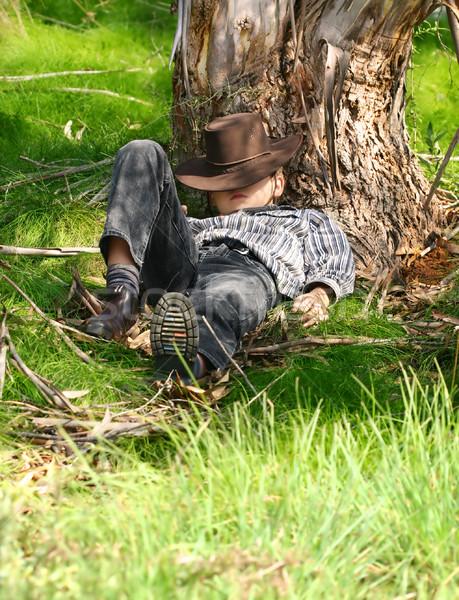 Goma árbol nino terreno Foto stock © lovleah
