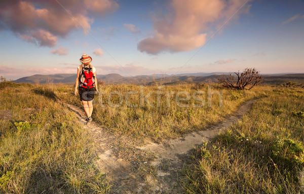 Female bushwalker hiking in the Blue Mountains Stock photo © lovleah