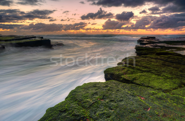 Ocean Flows at Turrimetta Stock photo © lovleah
