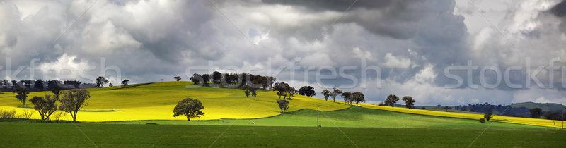 Paisagem pitoresco estrada ameaçador campos Foto stock © lovleah