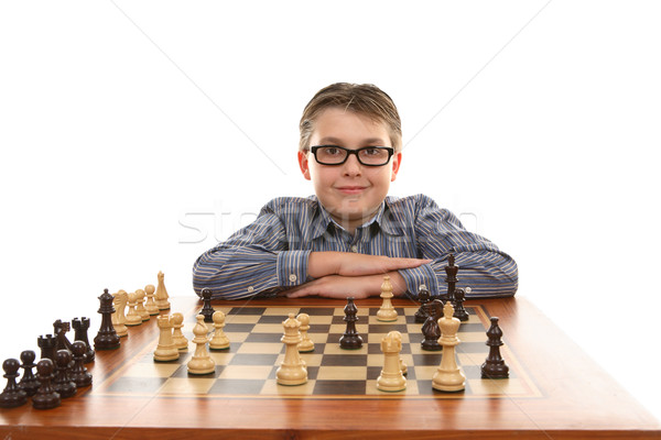 Chess Champion Stock photo © lovleah