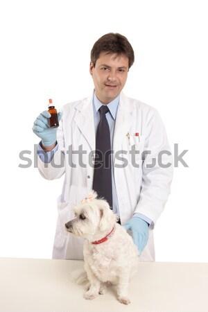 Dierenarts huisdier zalf tonen fles geneeskunde Stockfoto © lovleah