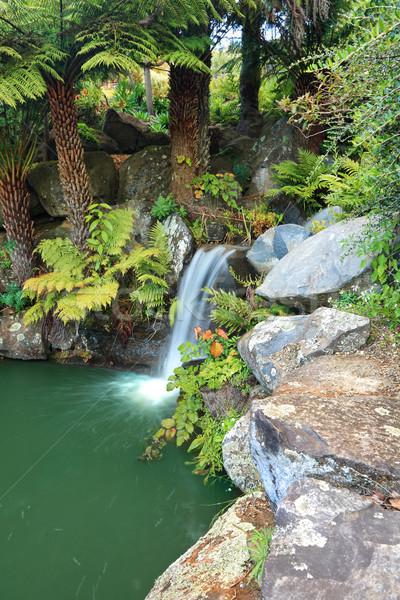 Waterfall at Mt Tomah Stock photo © lovleah