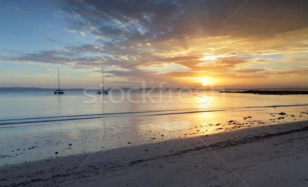 Agua puesta de sol sereno col árbol Foto stock © lovleah