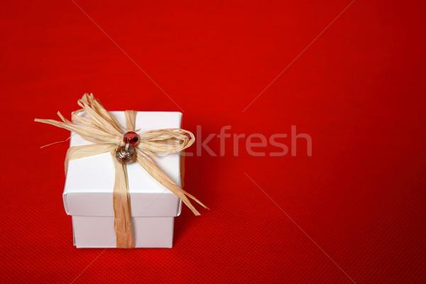 Noel hediye doğum günü özel gün sunmak uzay Stok fotoğraf © lovleah