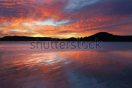 Spectacular sunrise at Koolewong Stock photo © lovleah