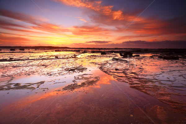 Sunrise skies reflecting on the exposed rocks in low tide Stock photo © lovleah