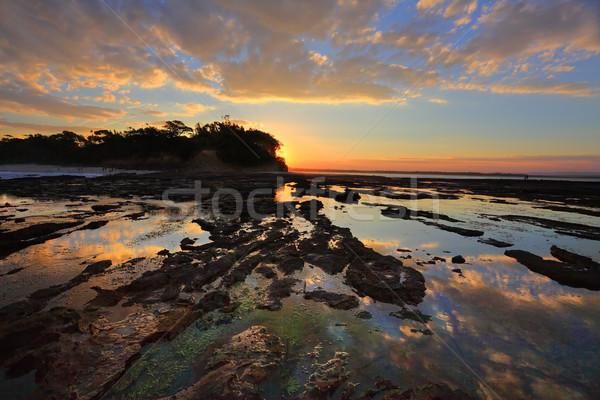 Cores reflexões plantação ponto pôr do sol bastante Foto stock © lovleah