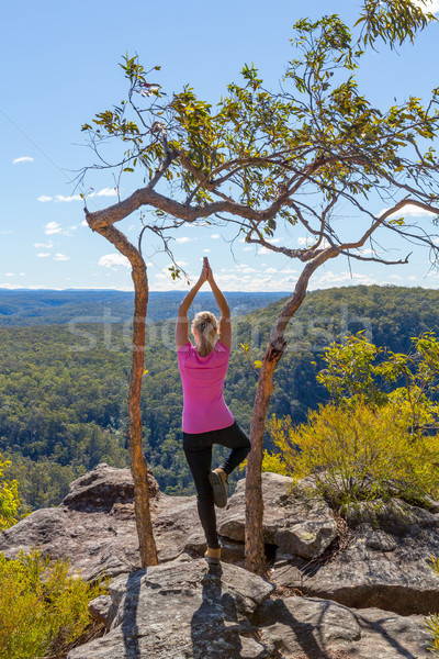 Female yoga asanas in mountain wilderness views Stock photo © lovleah