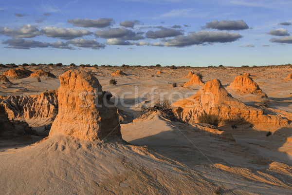 Mounds in the desert landscape outback Australia Stock photo © lovleah