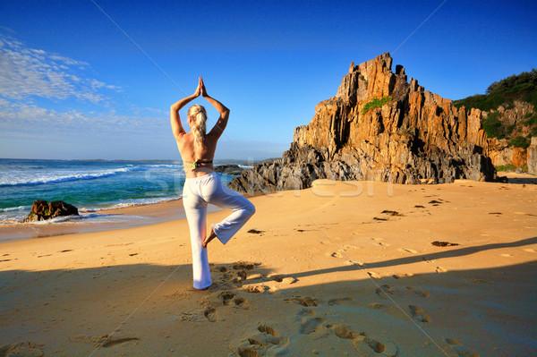 Jóga élet stressz szabad egészséges élet női Stock fotó © lovleah
