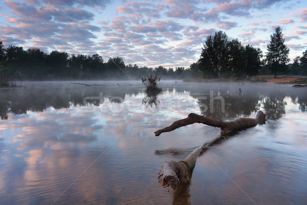 Misty riflessioni nebbia sopra superficie Foto d'archivio © lovleah