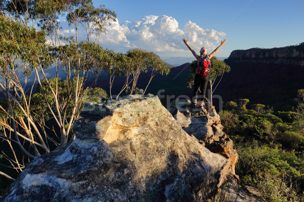 Woman top of mountain exuberant success Stock photo © lovleah