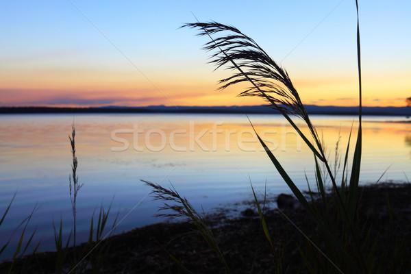Zachód słońca sylwetka wygaśnięcia wody morza dość Zdjęcia stock © lovleah