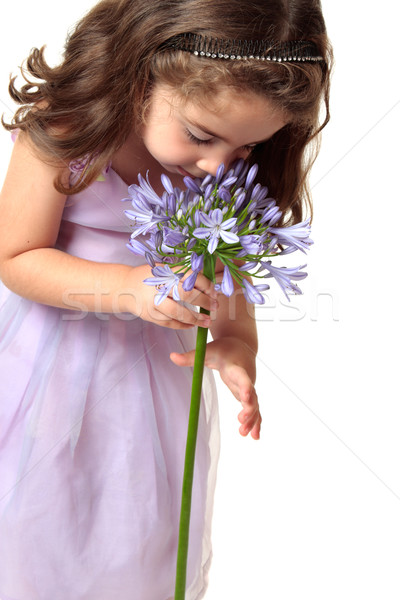 Girl smelling a beutiful flower Stock photo © lovleah