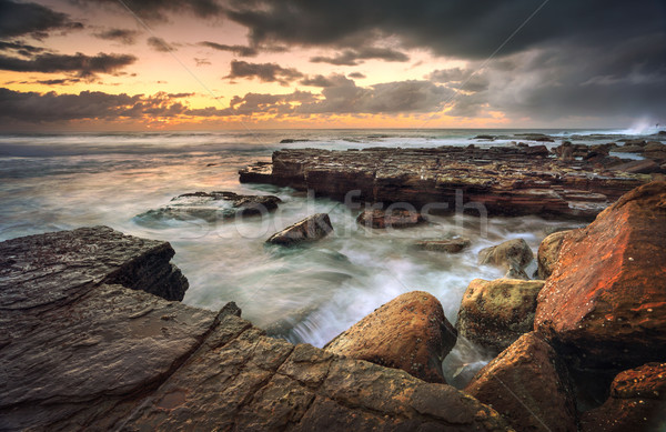 Turrimetta Rockshelf Stock photo © lovleah